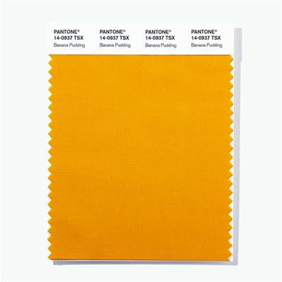 14-0937 TSX Banana Pudding - Polyester Swatch Card