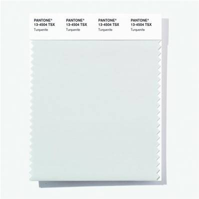 13-4504 TSX Turquenite - Polyester Swatch Card
