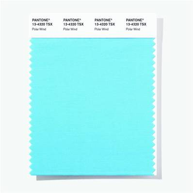 13-4320 TSX Polar Wind - Polyester Swatch Card